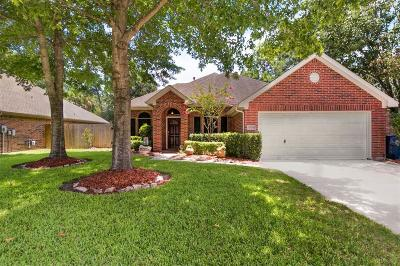 Spring Single Family Home For Sale: 29714 Spring Terrace Drive