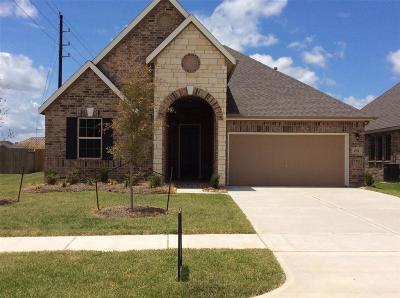 Fort Bend County Single Family Home For Sale: 2531 Wembley Way