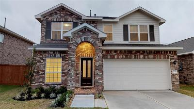 Texas City Single Family Home For Sale: 2230 Del Mar Drive