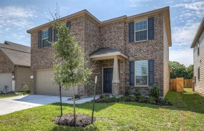 Houston Single Family Home For Sale: 4419 Windmill Run Drive