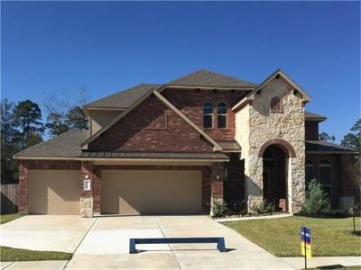 Conroe Single Family Home For Sale: 14204 S Crater Lake Court