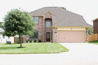 Single Family Home For Sale: 941 Oak Lynn Drive