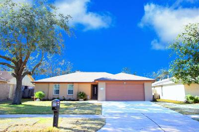 Houston Single Family Home For Sale: 10614 Sageberry Drive