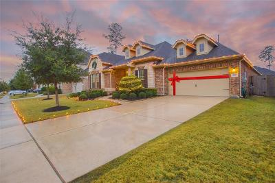 Conroe Single Family Home For Sale: 8110 Tranquil Lake Way