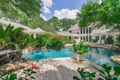 Houston Single Family Home For Sale: 513 Rancho Bauer Drive
