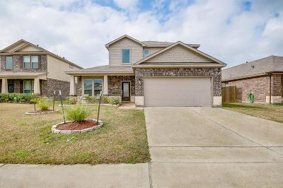 Manvel Single Family Home For Sale: 19 Coconut Palms Court