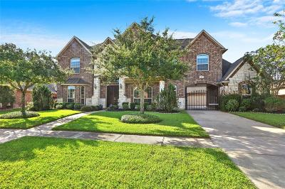 Manvel Single Family Home For Sale: 2510 Apache Plume Lane