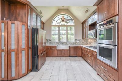 Spring Single Family Home For Sale: 17115 Chestnut Creek Court