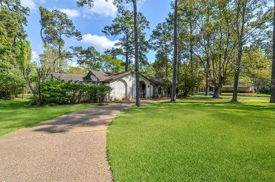 Houston Single Family Home For Sale: 11000 Hunters Park Drive