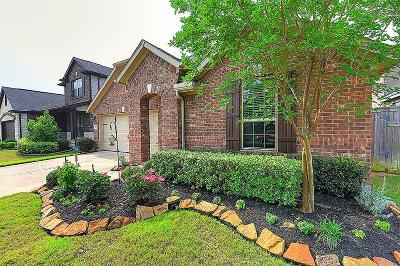 Fulshear Single Family Home For Sale: 27235 Buffalo Hills Lane