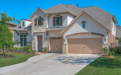 Montgomery Single Family Home For Sale: 105 Chaparral Bend