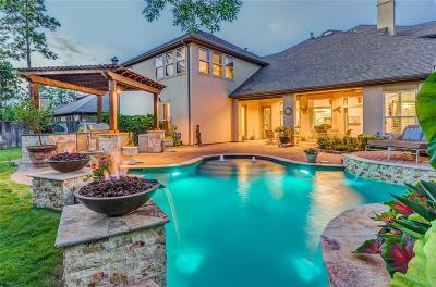The Woodlands Single Family Home For Sale: 7 Shasta Bend Circle