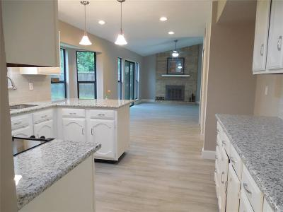 Houston Single Family Home For Sale: 4219 E Peachfield Circle