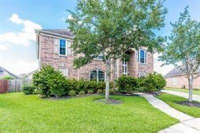 Pearland Single Family Home For Sale: 2510 Quiet Lake Court