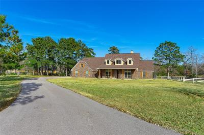 Magnolia Single Family Home For Sale: 20 Wellesly Court
