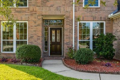 Pearland Single Family Home For Sale: 8302 Seagull Lane