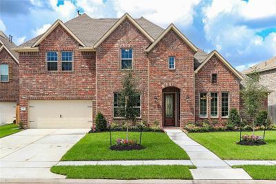 League City Single Family Home For Sale: 1430 Hicks Field
