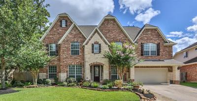 Houston Single Family Home For Sale: 2622 Twisting Pine Court