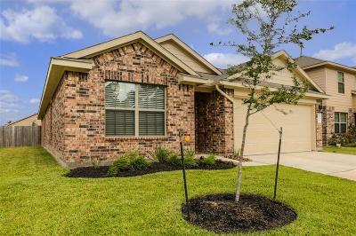 Tomball Single Family Home For Sale: 9718 Paloma Creek Drive
