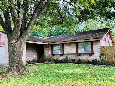 Sugar Land Single Family Home For Sale: 10427 Towneview Drive