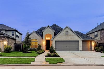 Fulshear Single Family Home For Sale: 30710 Barred Owl Way