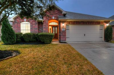 Tomball Single Family Home For Sale: 23318 W Pine Ivy Lane