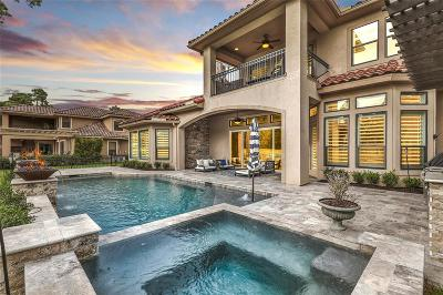 Spring Single Family Home For Sale: 73 Shadow Creek Ridge Drive