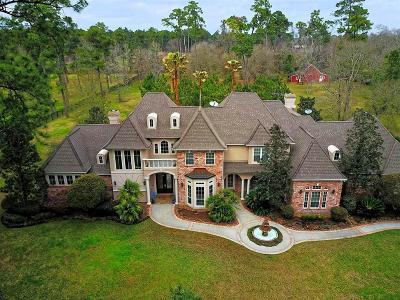 Tomball Single Family Home For Sale: 23 Saddlebrook Court