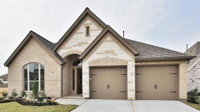 Pearland Single Family Home For Sale: 3106 Primrose Canyon Lane