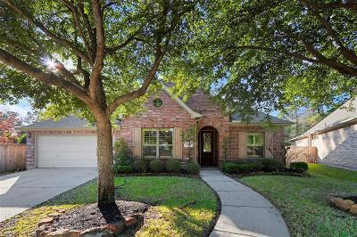 Porter Single Family Home For Sale: 25516 Polaris Creek Drive