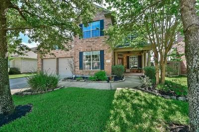 Katy Single Family Home For Sale: 9730 Eagle Peak Court