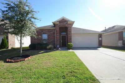 Harris County Single Family Home For Sale: 2802 Defoe Drive