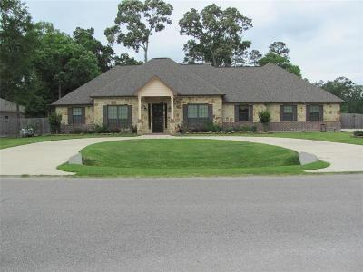 Huffman Single Family Home For Sale: 27715 Live Oak View Court