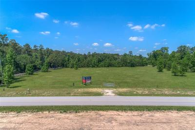Conroe Residential Lots & Land For Sale: McCaleb Road