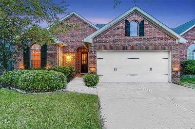 Katy Single Family Home For Sale: 28206 Chalet Park Drive