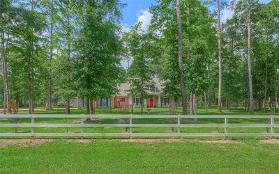 Grimes County Single Family Home For Sale: 8929 Hickory Road