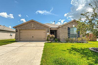 Baytown Single Family Home For Sale: 1006 Arnica Street