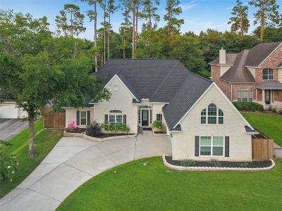 Montgomery Single Family Home For Sale: 157 Park Way