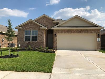 Katy Single Family Home For Sale: 20923 Azelea Field Street