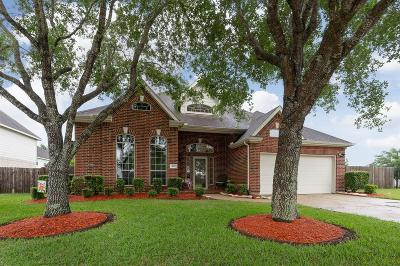 Pearland Single Family Home For Sale: 3917 Austin Lake Court