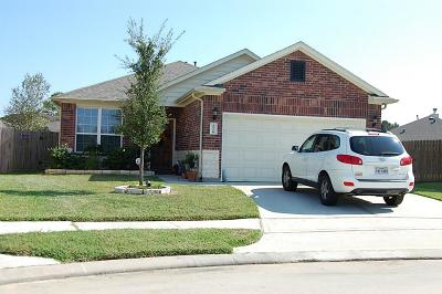 Tomball Single Family Home For Sale: 20106 Galena Falls Drive