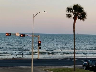 Galveston TX Condo/Townhouse For Sale: $110,000