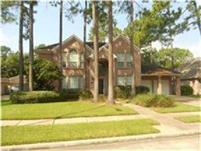 Clear Lake Single Family Home For Sale: 3915 Cinnamon Fern Court