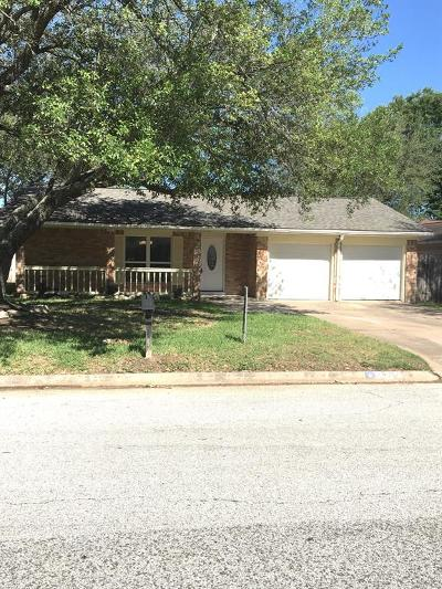 Katy Single Family Home For Sale: 2520 Village Circle Drive
