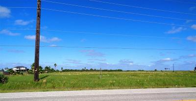 Galveston Residential Lots & Land For Sale: Lot 1 Seabird