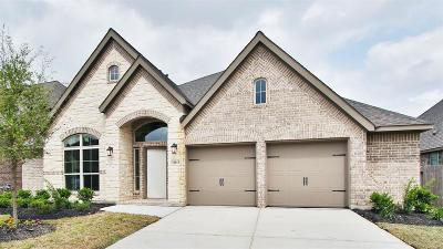 Pearland Single Family Home For Sale: 13611 Imperial Island Lane