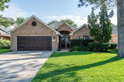 Katy Single Family Home For Sale: 6006 Sandy Valley Drive