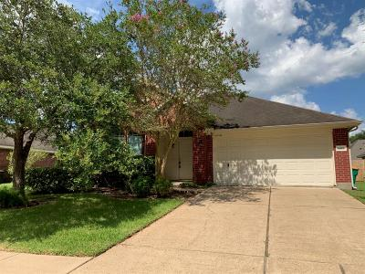 Pearland Single Family Home For Sale: 1817 Castle Oaks Drive