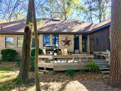 Conroe Single Family Home For Sale: 113 Clear Springs Drive