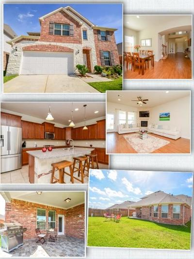 Katy Single Family Home For Sale: 26046 Haggard Nest Drive